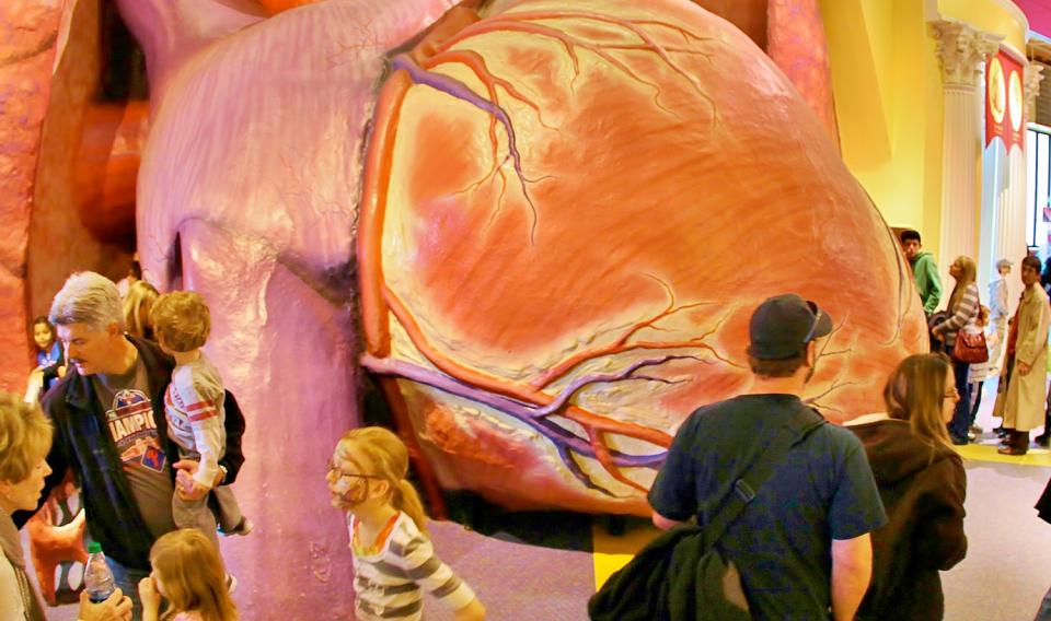 A crowd stands in front of the walk-through Giant Heart exhibit at The Franklin Institute.