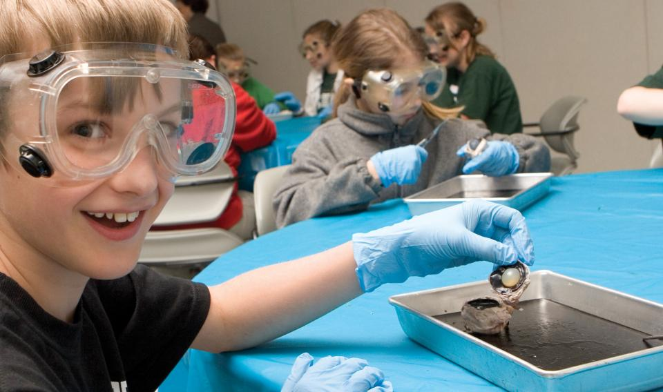 Boy dissecting a cow eye during one of our workshops.